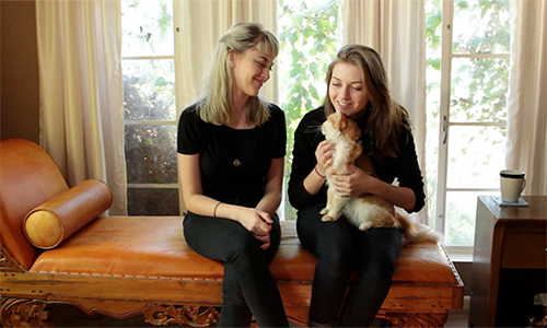 Daughters of Sheri Geiss, founder of Mews Cat Café, play with a cat in this screenshot from an Indiegogo video. Geiss said she aims to create a cat café similar to the ones popular in China and Japan. (Courtesy of Sheri Geiss)